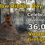 2015 10 07 Yellow Ribbon Day - Celebrating Queensland.jpg